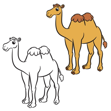 Illustration of cute camel. Coloring book.Vector