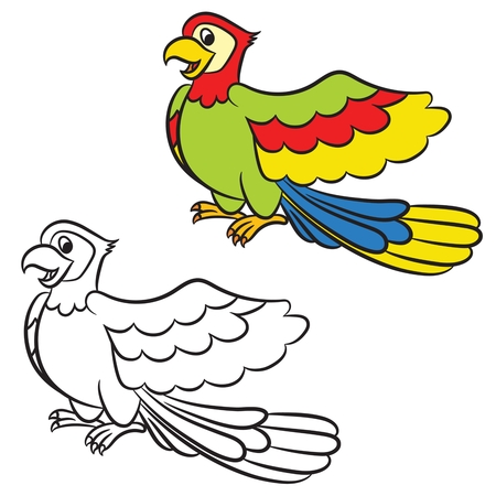 Cartoon parrot on a white background. Coloring book. Vector Vector