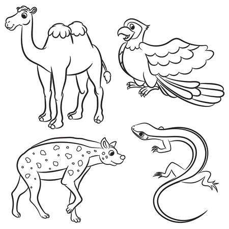 camels: Cute animals collection. Vector illustration.