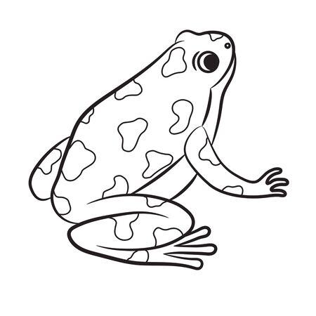 Outlined Poison-Dart Frog. Vector