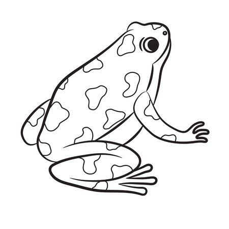 Outlined Poison-Dart Frog. Vector