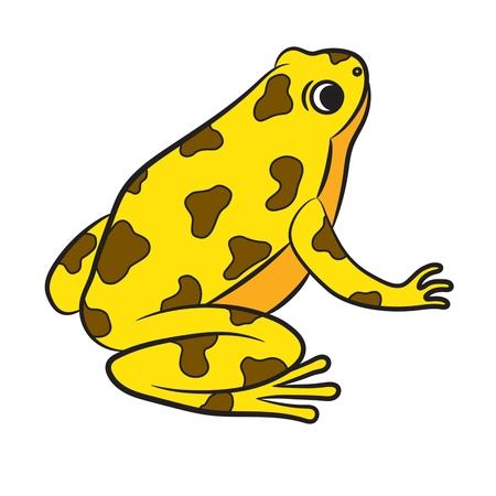 rana venenosa: Caricatura de Poison-Dart Frog. Vector