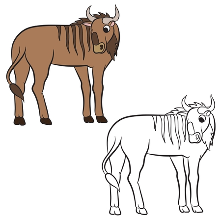 african wildebeest: Illustration of a wildebeest. Coloring page Illustration