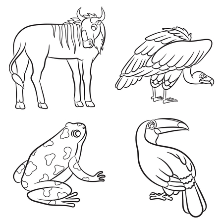 beak vulture: Cute animals collection. Vector illustration.