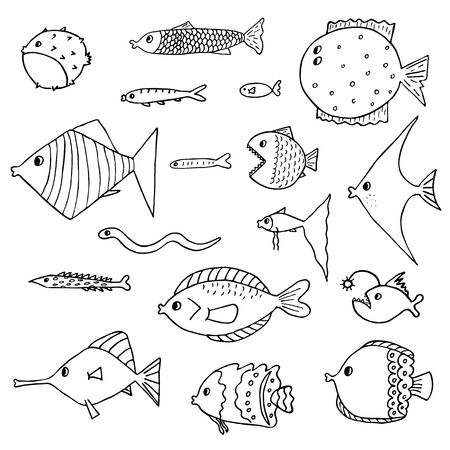 fish illustration: Set of exotic fish. Vector illustration. Isolated