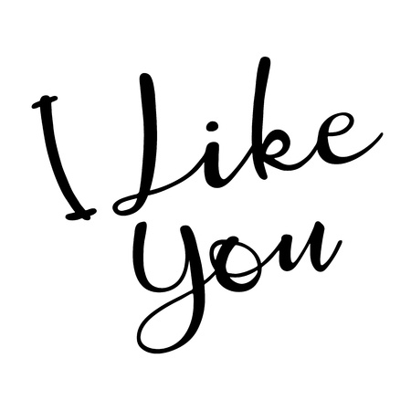 I like you. Hand Lettered Quote.  Modern Calligraphy