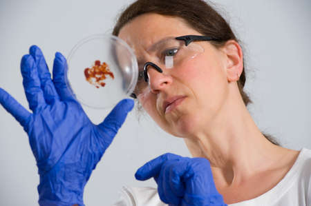 dark haired: dark haired female lab assistand with Petri dish