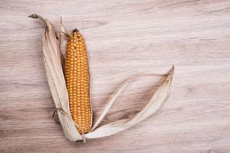 corncob: still- life- ripe corncob on wooden ground