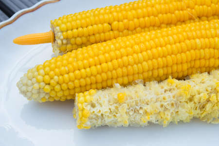 Two fresh and one eaten corncobs on plate on wooden ground