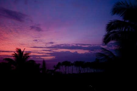A beautiful pink tropical sunset Stock Photo
