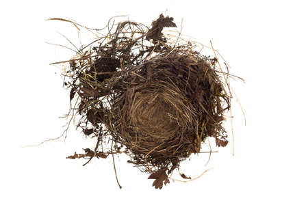 Top View Of An Empty Birds Nest Isolated On White Background