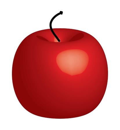 Red apple - illustration illustration