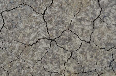 waterless: Hardened and ground cracks. Stock Photo