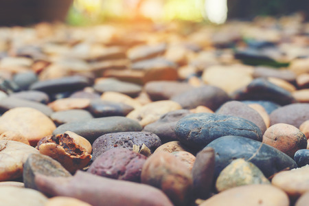 Reiver stone for garden decorate. Stock Photo