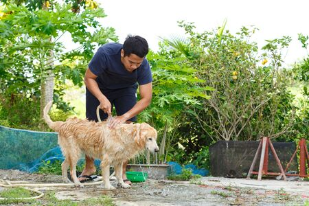 Asian man's bathing his golden retriever at outdoor area. Standard-Bild