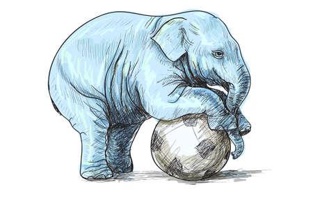 Baby olifant spelen voetbal, schets en vrije hand tekenen illustratie vector