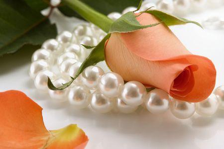 Weiße Perlenkette und stieg auf weißem Hintergrund