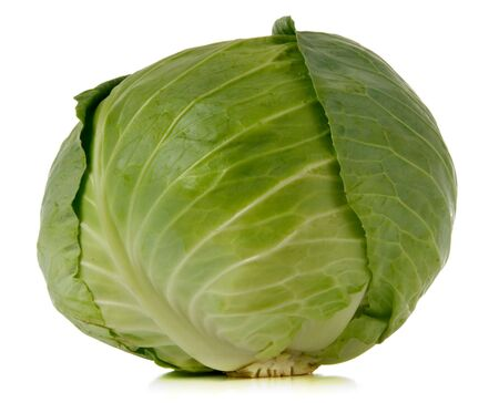green cabbage over white background photo