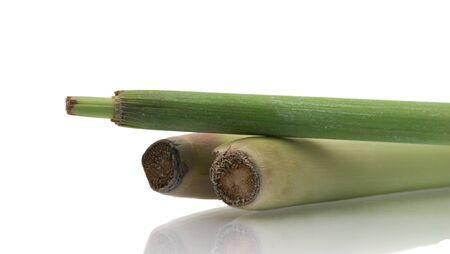 lemongrass: lemongrass over white background