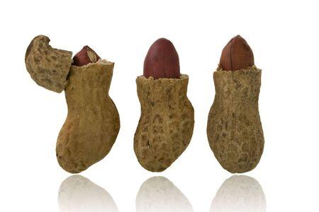 monkey nut: three roasted peanuts over white background