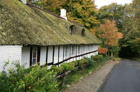 thatched roof: Half-timbered cottage with thatched roof in the forest Stock Photo