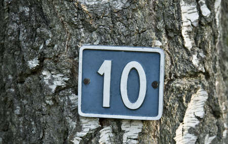 White number 10 on blue background attached to a tree