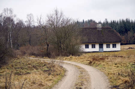 thatched roof: Cottage with thatched roof in a forest near Silkeborg, Denmark