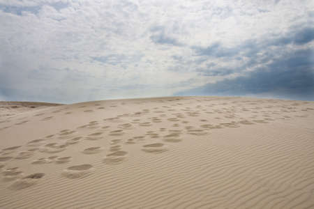 Footsteps in the sand at Raabjerg Mile near the Skaw, Denmark