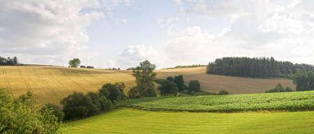 Summer in the fields near Skanderborg, Denmark  Panorama  Copy space