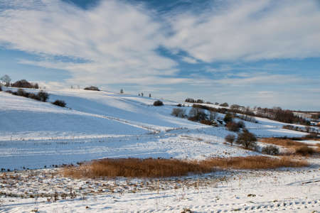 Winter landscape from the countryside. Can be used as background Stock Photo