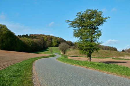 Small curved country road at spring time