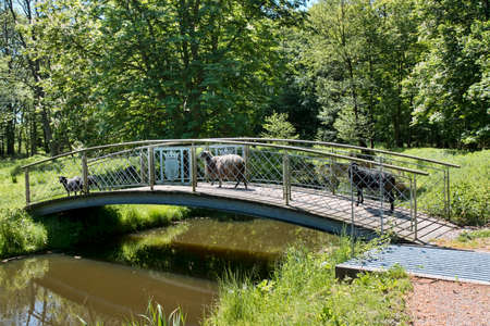 Sheep on a small bridge on a summer day