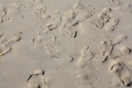 sand mold: footprints in the sand on a beach  Stock Photo