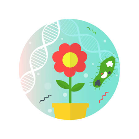Infographic containing a flower and a unicellular organism on the background of DNA vector illustration.