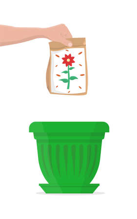 Package of colorful flower seeds above a red flower pot. Vector Illustration.
