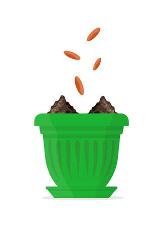 Seeds falling into a green flower pot. Vector Illustration.