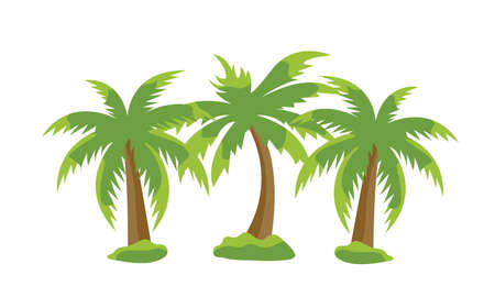 Set of tropical exotic palms isolated on the white background. Vector Illustration.