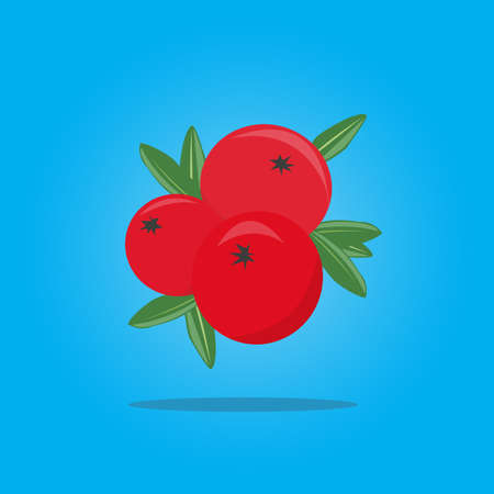 Bright fresh cranberries on a blue background. Vector Illustration.
