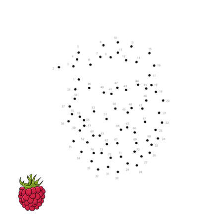 A Vector appetizing beautiful raspberry for kids drawing. Child educational game page. 向量圖像