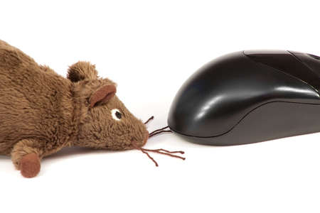 Computer Mouse and a toy, to each other on a white background photo
