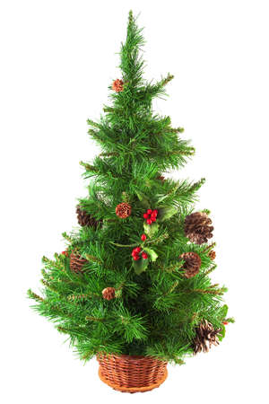decorated christmas tree: Decorated, well-dressed Christmas tree on a white background