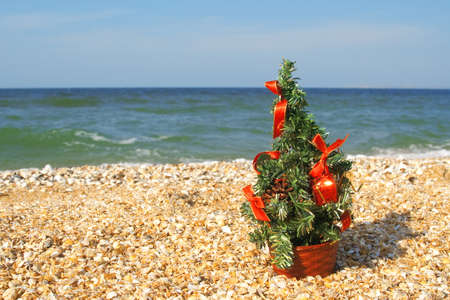 Festively decorated Christmas tree on the beach Stock Photo