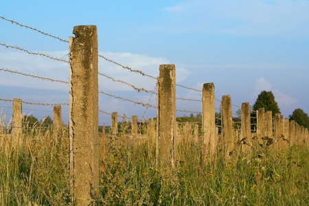 The concrete fence with barbed wire, photographed on a summer evening photo