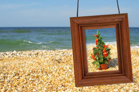 Christmas Tree and photographic frame on the beach photo