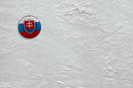 Washer with the image of the Slovak flag on a hockey rink
