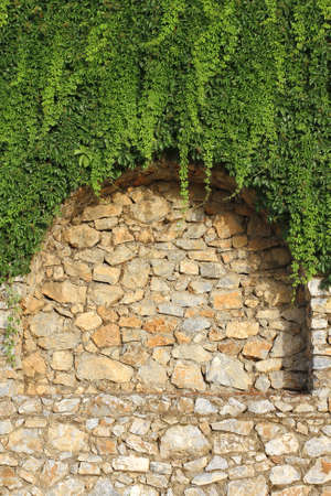 Detail of brick wall with decorative arches and growing plant  photo