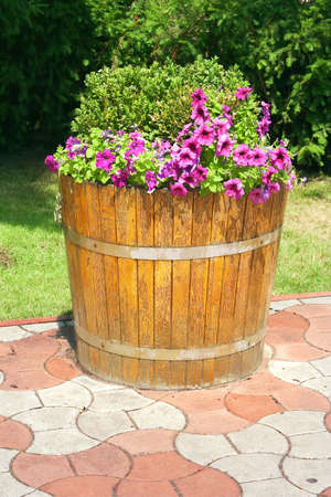barrel tile: Decorative flowers in the barrel, as an element of landscape design