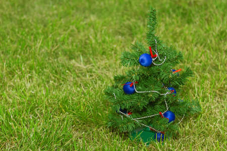 festively: Festively decorated Christmas tree standing on the lawn Stock Photo