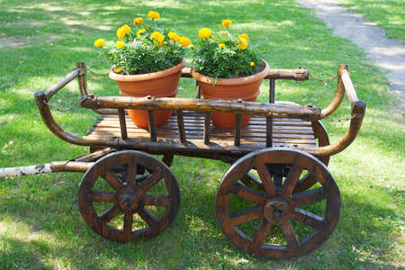 wheel barrel: Rustic wagon with flowers, as an element of landscape design Stock Photo