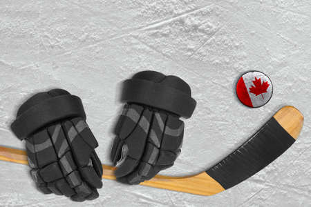 ice arena: Hockey puck, stick and gloves on the ice arena. Concept